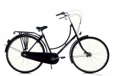 Batavus Old Dutch 50 cm