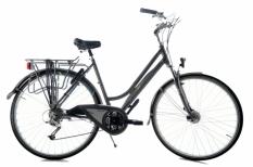 Multicycle Recreative De Luxe 53 cm