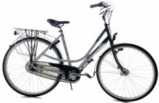 Batavus Allegro 53cm