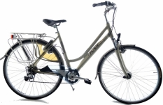 Multicycle Invite 53cm