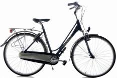 Multicycle Elegance 51cm