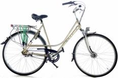 Gazelle Paris Plus 57cm