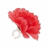 Kwiat na kierownicę peonia czerwona Basil