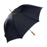 Paraplu zw