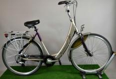 Batavus Padova Easy 55cm ION Rower Elekrtyczny
