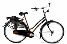 Gazelle Free 57cm rower powystawowy - 30%