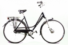 Gazelle Paris 53cm
