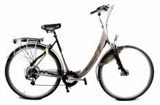 Batavus Padova Easy 55cm ION Rower Elektryczny