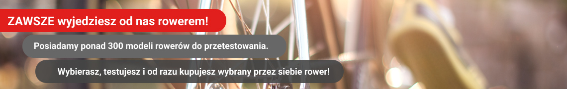 6c10932e808f03 Tanie rowery holenderskie używane - ATRAKCYJNE Ceny Poznań Warszawa